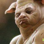 Людям начнут пересаживать сердца от свиней