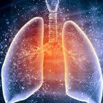 Прорыв в трансплантологии: ученые вырастили «новые» легкие