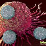 Инъекция мертвых клеток помогает бороться с раком