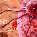 Обнаружен новый тип раковых клеток