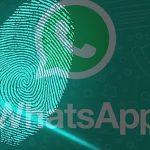 Планы WhatsApp по безопасности многих шокируют! Для настольной версии требуется отпечаток пальца