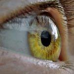 Сможет ли инновационная бионическая система вернуть зрение слепым?